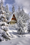 Het sneeuw omvatte centrum van de de winterski Stock Afbeeldingen