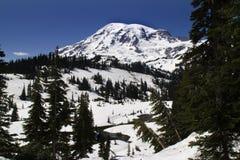 Het sneeuw Paradijs, zet Regenachtiger op Stock Foto's