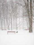 Het sneeuwen royalty-vrije stock afbeelding