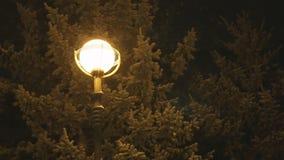 Het sneeuwen bij nacht op de achtergrond van een lantaarnpaal stock video