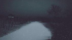 Het sneeuwen in het donkere landschap stock videobeelden