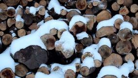 Het is het sneeuwen, langzaam behandelend de logboeken met een witte koude deken stock footage