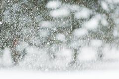Het sneeuwen of sneeuwval Stock Foto's