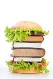 Het snelle voedsel van het onderwijs Stock Afbeelding