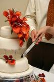 Het snijden in huwelijkscake Royalty-vrije Stock Afbeelding