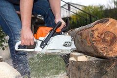 Het snijden van de boom Stock Foto's