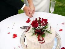 Het snijden van de cake Stock Afbeelding