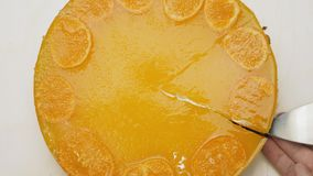 Het snijden van een stuk van kaastaart met mandarijngelei op bovenkant stock footage