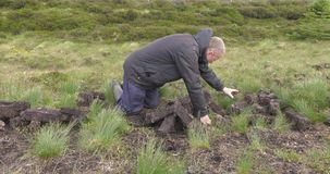 Het snijden van en het passen van grasturf met een spade in mosmoeras in Ierland stock footage