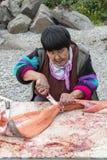 Het snijden van enkel catched zalm op de bank van Anadyr-firth, Chukotka stock afbeeldingen