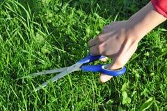 Het snijden van het gras met schaar Royalty-vrije Stock Afbeeldingen