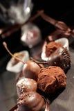 Het snoepje van de truffel Stock Fotografie