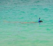 Het snorkelen in de open zee Stock Afbeeldingen