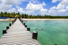Het snorkelen en pret in een Caraïbisch strand stock afbeeldingen
