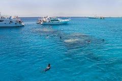 Het snorkelen in het Rode Overzees dichtbij Hurghada (Egypte) Royalty-vrije Stock Afbeelding