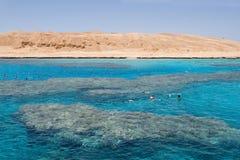 Het snorkelen in het Rode Overzees dichtbij Hurghada (Egypte) Stock Foto