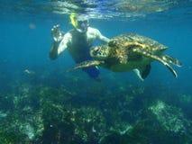 Het snorkelen met een overzeese schildpad Royalty-vrije Stock Foto