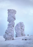 Het snow-bound bos is in de bergen van het Noorden Ural stock fotografie