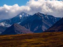 Het Snowcapped Berg Piek Toenemen boven Autumn Tundra, het Nationale Park van Denali royalty-vrije stock afbeeldingen