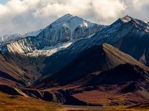 Het Snowcapped Berg Piek Toenemen boven Autumn Tundra, het Nationale Park van Denali royalty-vrije stock afbeelding