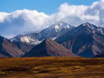 Het Snowcapped Berg Piek Toenemen boven Autumn Tundra, het Nationale Park van Denali royalty-vrije stock foto's
