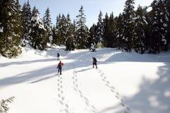 Het snowshoeing van de winter Stock Afbeeldingen