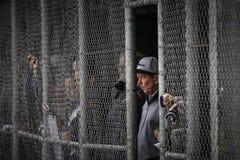 Het Softball 2014 van het wereldkampioenschap Royalty-vrije Stock Fotografie