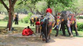 Het Songkranfestival wordt gevierd met olifanten in Ayutthaya Stock Fotografie