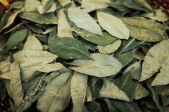 het sorteren van droge coca doorbladert in een kleine geweven mand royalty-vrije stock foto's