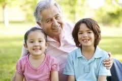 Het Spaanse Grootmoeder en Grootvader Ontspannen met Kleinzoon in P stock afbeeldingen