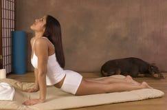 Het Spaanse meisje uitwerken in yoga stelt Stock Afbeelding