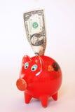 Het spaarvarken van de dollar Stock Foto's
