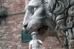 Het speciale verkort tekenen Het hoofd van het standbeeld van David in de open mond van het standbeeld van een leeuw royalty-vrije stock foto