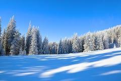 Het spectaculaire die panorama wordt geopend op bergen, bomen met witte sneeuw, gazon en blauwe hemel worden behandeld royalty-vrije stock fotografie