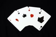 Het spel van de herfst. Stock Fotografie