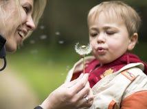 Het spel van de moeder en van het kind met bloem samen otdoor Royalty-vrije Stock Afbeeldingen