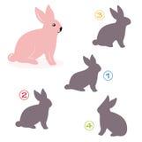 Het spel van de vorm - het konijntje Royalty-vrije Stock Foto's