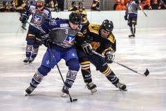 Het Spel van het hockey Royalty-vrije Stock Afbeeldingen