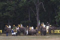 Het spel van het olifantspolo in Thakurdwara, bardia, Nepal Stock Foto