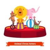 Het spelen de circusdieren tonen op rode arena Royalty-vrije Stock Foto