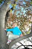 Het spelen in een boom Stock Afbeelding