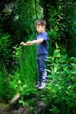 Het spelen in het hout Stock Foto's