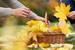 Het spelen met de herfstbladeren Stock Foto's