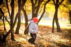 Het spelen met leaves_3 Stock Afbeeldingen