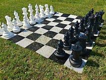 Het spelen schaak Stock Foto's