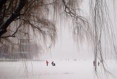 Het spelen in sneeuw Stock Foto