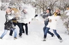 Het spelen in sneeuw Stock Fotografie