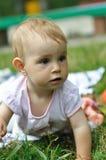 Het spelen van de baby op het gazon Royalty-vrije Stock Afbeelding