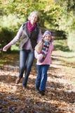 Het spelen van de grootmoeder en van de kleindochter in hout stock fotografie