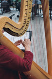 Het spelen van de harp Stock Foto